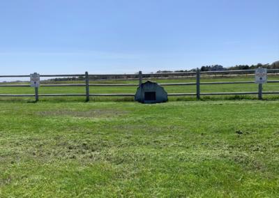 Katama Airfield 5